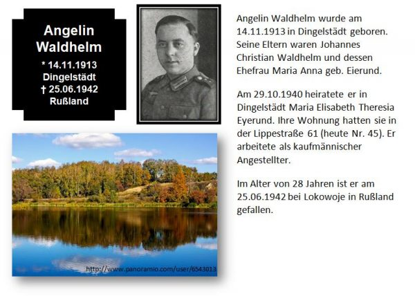 Waldhelm, Angelin